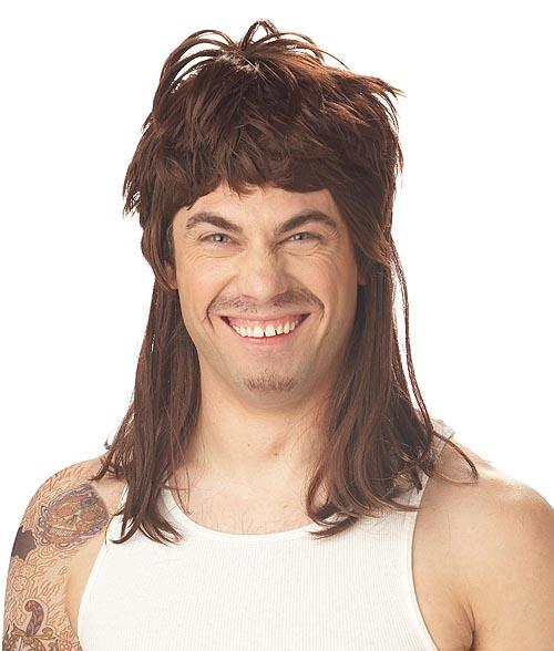 Purchase A Joe Dirt Mullet Wig 58